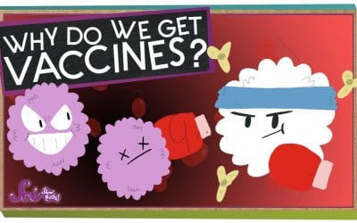 What is a Vaccine?